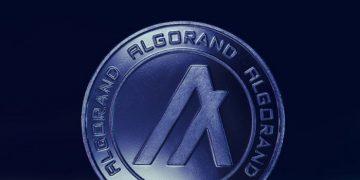 La Fondation Algorand lance un fonds de 300 millions de dollars